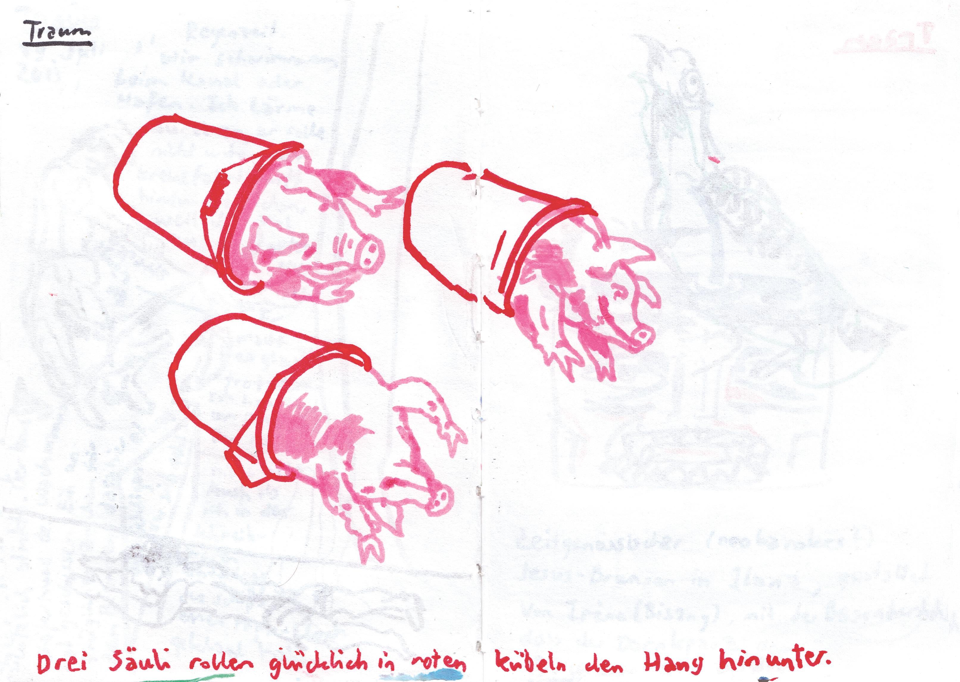 00 07 2013 Säuli
